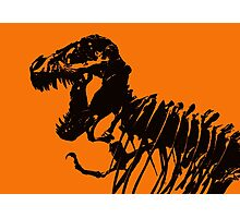 T-Rex Skeleton Photographic Print