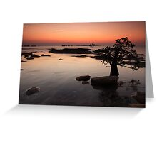 Nightcliff Sunset Greeting Card