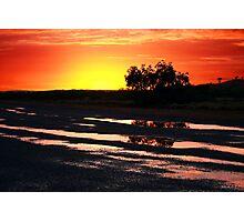 Tree at Sunrise Photographic Print