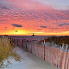Late Fall Sunset by Debbie  Maglothin