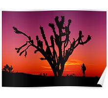 Sunset Over Mojave National Preserve Poster