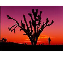 Sunset Over Mojave National Preserve Photographic Print