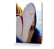SENSITIVE CREATURES Greeting Card