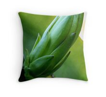 Sleeping Dragon. Throw Pillow