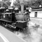 Puffing Billy will depart from Belgrave Platform 1 in 15 minutes by TonyCrehan