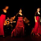 Flamenco nighte 3 by Aleksandar Topalovic