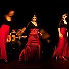 Flamenco nighte 3 by Aleksandar Topalovic