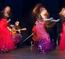 Flamenco nighte 5 by Aleksandar Topalovic