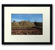 highest pasture Framed Print