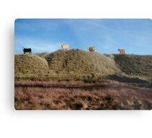 highest pasture Metal Print