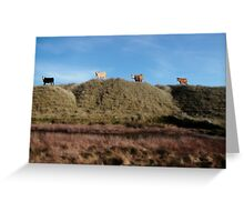 highest pasture Greeting Card