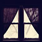 a winter morning by Angel Warda