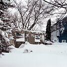 Blizzard of 2011--Back yard by MarjorieB