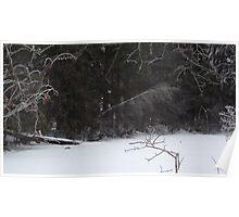 Winterized Pond Poster