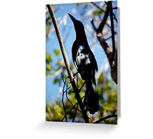 shady grackle  Greeting Card