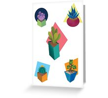 Successful Succulents Greeting Card