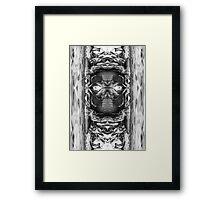 Mountain Mono  Framed Print