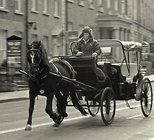 Horse drawn carriage by Esther  Moliné