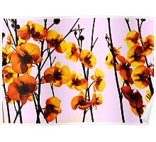 Artificial Flowers - Yellow on Pink Poster