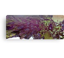 Abstract Fractal render Canvas Print