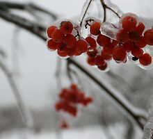 Fresh ice by ThreeHi
