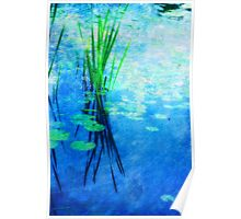 Ode to Monet Poster