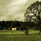 Killerton in winter by Rob Hawkins