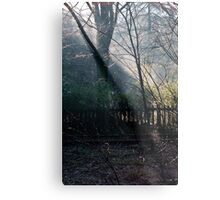 Morning at the Station take two Metal Print