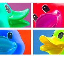 4 Ducks by Stephen Knowles