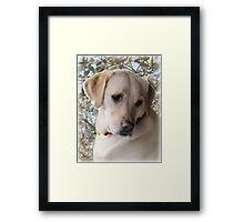 ~ My Girl ~ Framed Print