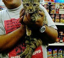 Ali & Bodega Cat by rnfox