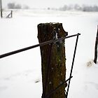 Snowy post and wire fence by agenttomcat