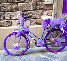 Purple bicycle by Jaime Pharr