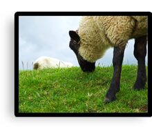 Welcome to Wales Canvas Print