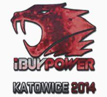 iBuyPower Holo Katowice 2014 CS:GO by Louis  .