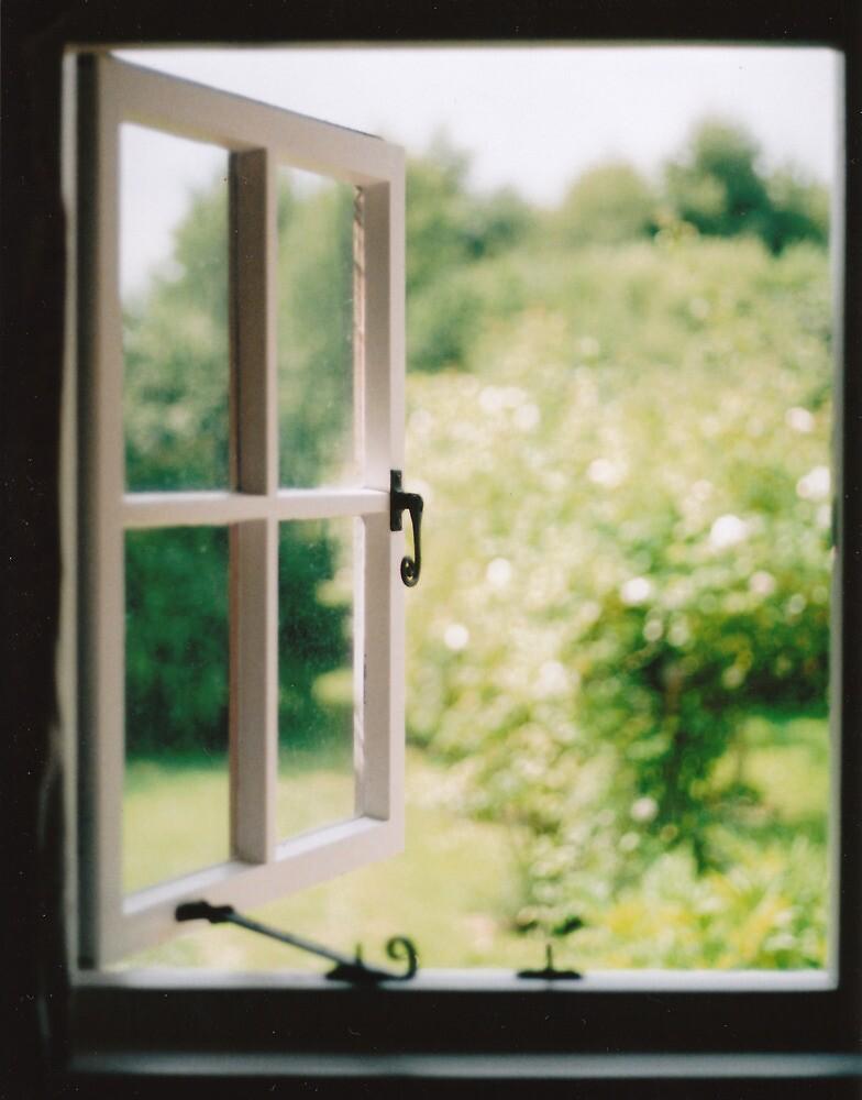 Window to Summer by montydawson