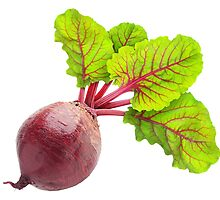 Beetroot with big leaves by 6hands