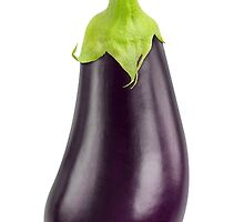 One eggplant by 6hands