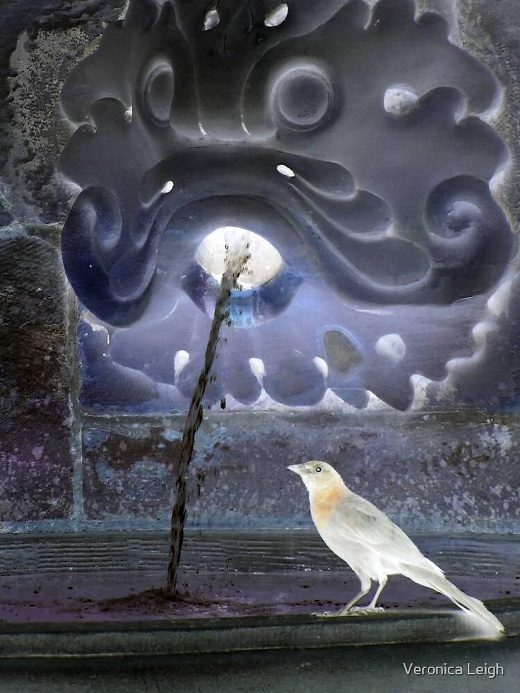 Where Magic Flows by Veronica Schultz