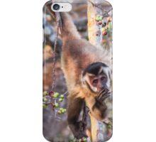 Fig loving Capuchin monkey iPhone Case/Skin