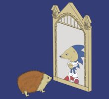 Hedgehog sees Sonic in Mirror of Erised (Harry Potter) by rorylando45
