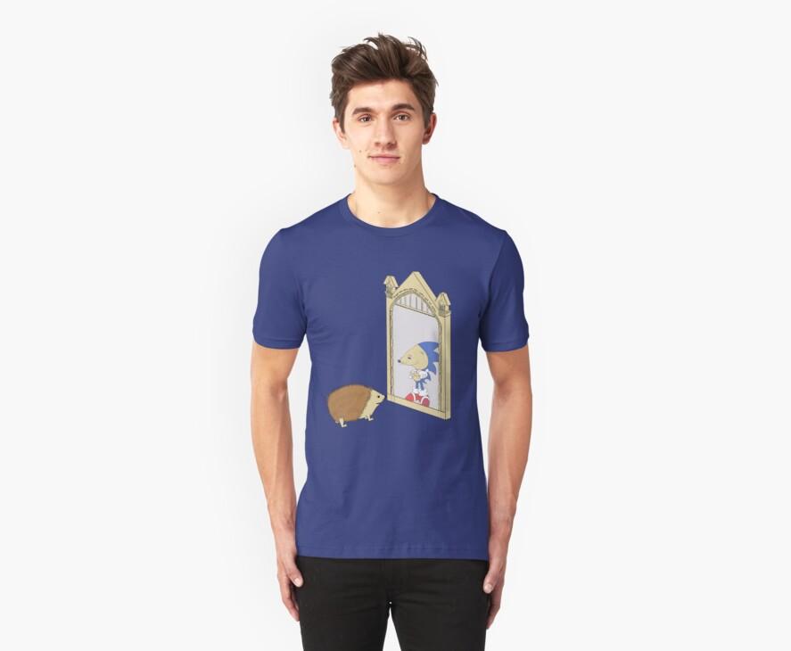Hedgehog sees Sonic in Mirror of Erised (Harry Potter) by rorylando45