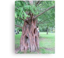 Disney Tree Metal Print