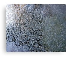 frosty the windowpane Canvas Print