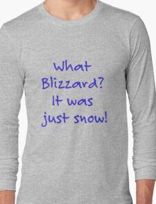 What Blizzard??? Long Sleeve T-Shirt