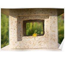 Dandelion Framed in Stone Poster