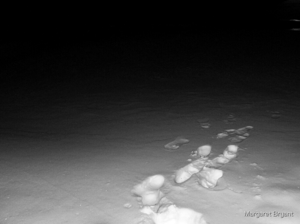 02-02-11  Into The Darkness by Margaret Bryant
