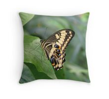 Emperor Swallowtail Throw Pillow