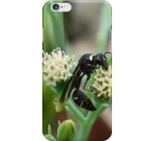 Insect iPhone Case/Skin