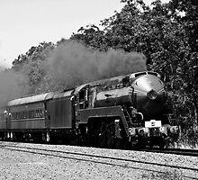 Magnificent Steam by Odille Esmonde-Morgan